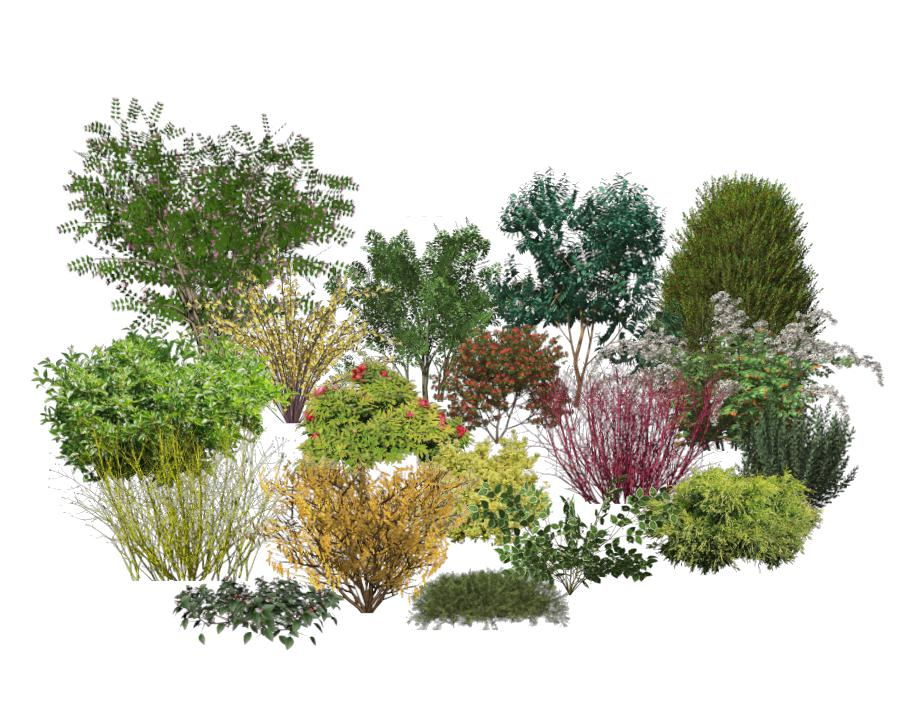 Landscaping Plants And Shrubs Small Yard Landscaping Ideas